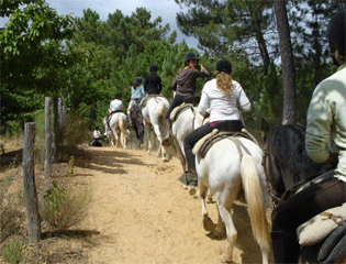 Horse Riding Excursion : Trip 1 or 2 hours