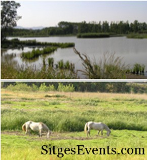Estany de Sils – Sils Lake 1hr approx from Sitges